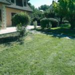 Jardin entretenu et taillé